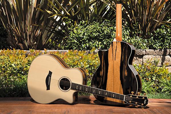 AEIM - Instrumentos musicales